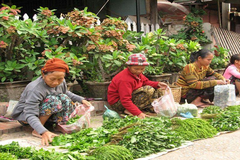 Luang-Prabang-morgenmad-2