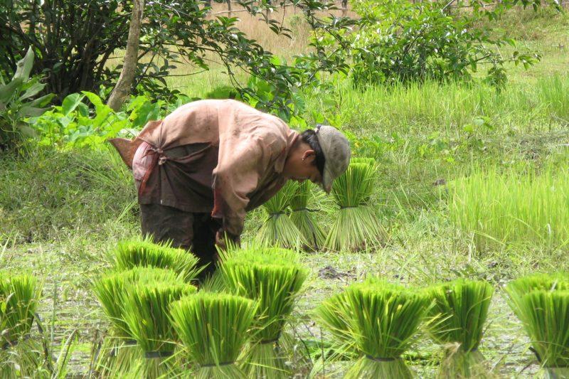 VN-Cam-Laos 155