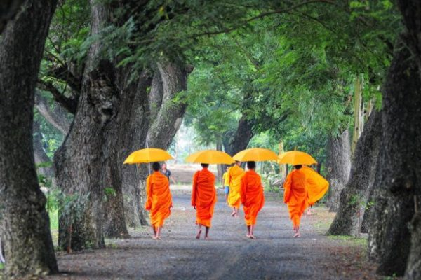AN GIANG, VIETNAM - FEB 26 2015. Unidentified young monks walking morning alms in An Giang, Vietnam. Theravada Buddhism arrived from India into the southern Vietnam between 300-600 AD.